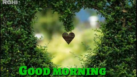 Sweet Good Morning Wishing Status Video Teri Ore