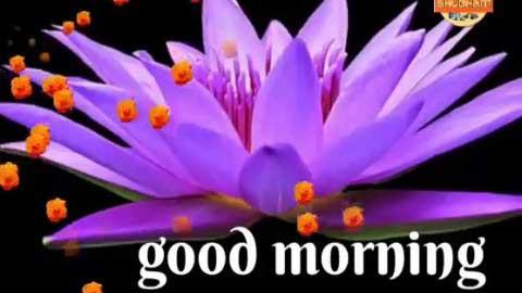 Very Good Morning