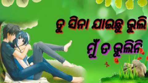 Tu Sina Jaichhu Bhuli Odia