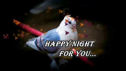 Romantic Good Night Video