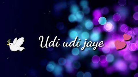 Udi Udi Jaye Happy Makar Sankranti