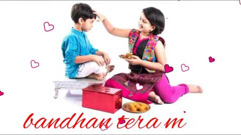 Happy Rakshabandhan Status For Brother