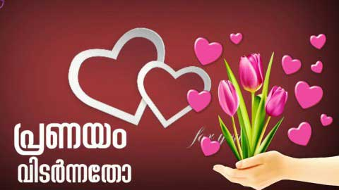 Kilikal Parannatho Beautiful Malayalam Hd Status